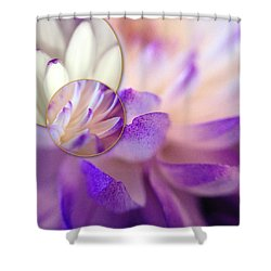 Bee's Eye View Shower Curtain by Susan Maxwell Schmidt