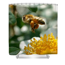 Bee's Feet Squared Shower Curtain by TK Goforth