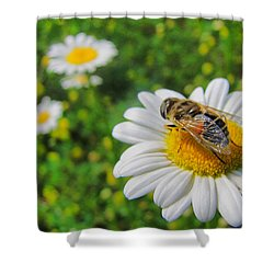 Honey Bee Pollination Services Shower Curtain
