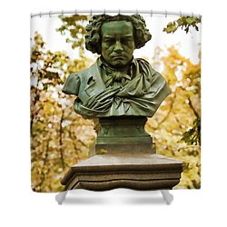 Beethoven In Central Park Shower Curtain by Alice Gipson