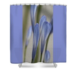 Before - Lily Of The Nile Shower Curtain by Ben and Raisa Gertsberg