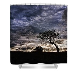 Nova Scotia's Lonely Tree Before The Storm  Shower Curtain