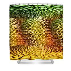Begining Shower Curtain by Mo T
