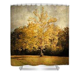 Beginning Of Autumn Shower Curtain by Jai Johnson
