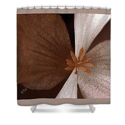 Begonia Shower Curtain by Ben and Raisa Gertsberg
