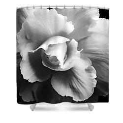 Begonia Flower Monochrome Shower Curtain