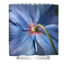 Behind The Blue Poppy Shower Curtain by Carol Groenen