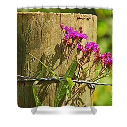Behind The Fence Shower Curtain by Mary Carol Story