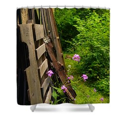 Behind The Old Shed Shower Curtain by Mary Machare