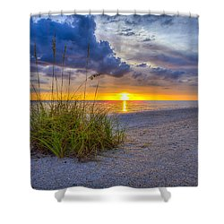 Behind The Sea Grass Shower Curtain by Sean Allen