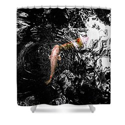 Being Koi Shower Curtain by Glenn DiPaola