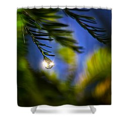Bejeweled Shower Curtain by Mark Andrew Thomas