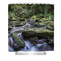 Belelle River Neda Galicia Spain Shower Curtain