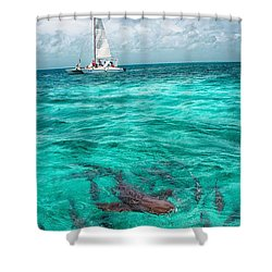 Belize Turquoise Shark N Sail  Shower Curtain