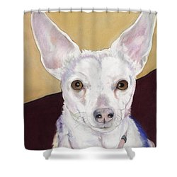 Belle Shower Curtain by Pat Saunders-White