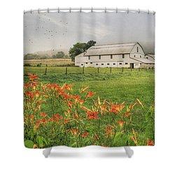 Belleville Morning Shower Curtain by Lori Deiter