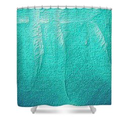 Shower Curtain featuring the photograph Beluga Abstract by Nadalyn Larsen