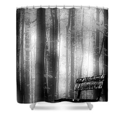 Bench In Michigan Woods Shower Curtain