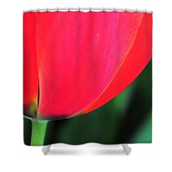 Shower Curtain featuring the photograph Beneath by Mike Martin