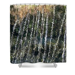 Beneath The Reflection Shower Curtain by Roxy Hurtubise