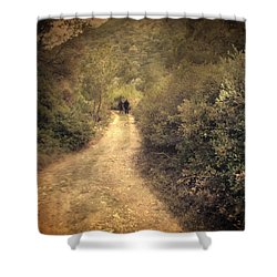 Beneath The Woods Shower Curtain by Taylan Apukovska