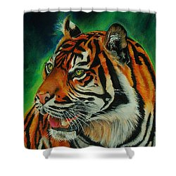 Bengal Shower Curtain by Jean Cormier
