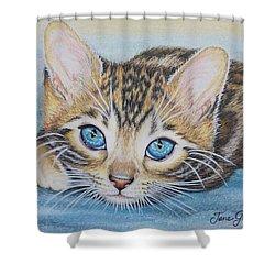 Bengal Kitten Shower Curtain