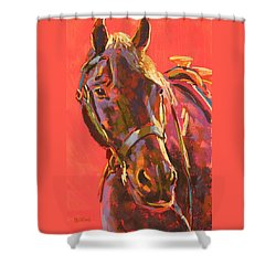 Benny Shower Curtain by Mary McInnis