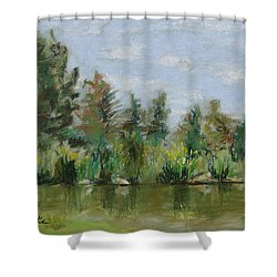 Benson Sculpture Park Shower Curtain by Mary Benke
