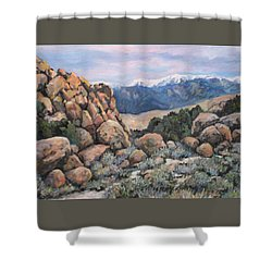 Shower Curtain featuring the painting Benton by Donna Tucker