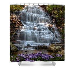 Benton Falls In Spring Shower Curtain