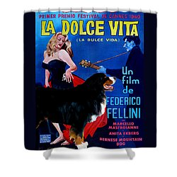 Bernese Mountain Dog Art Canvas Print - La Dolce Vita Movie Poster Shower Curtain