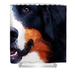 Bernese Mountain Dog - Half Face Shower Curtain by Sharon Cummings