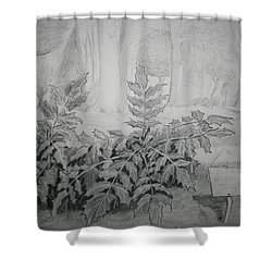 Shower Curtain featuring the drawing Bernheim Forest Plant by Stacy C Bottoms