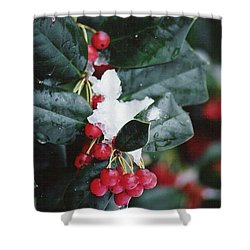 Berries In The Snow Shower Curtain