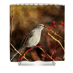 Berry Delighted Shower Curtain by Donna Kennedy