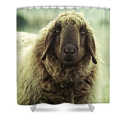 Besch Da Pader Shower Curtain