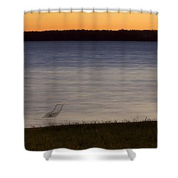 Beside Myself - Great Blue Heron At Sunset Shower Curtain by Jane Eleanor Nicholas