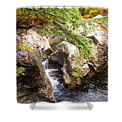 Shower Curtain featuring the photograph Beside The Water by Bill Howard