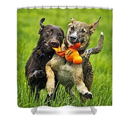 Best Friends 2011 Shower Curtain