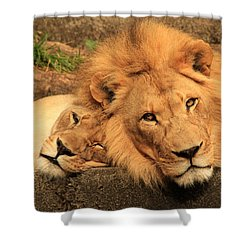 Best Friends For Life Shower Curtain