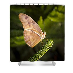 Best Side Of The Butterfly Shower Curtain by Jean Noren