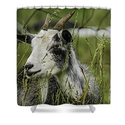 Betsy Shower Curtain by Mary Carol Story