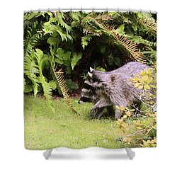 Better Run Thru The Jungle Shower Curtain by Kym Backland