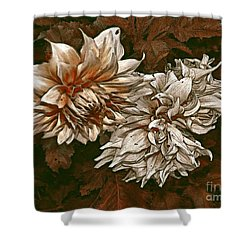 Shower Curtain featuring the photograph Betty's Beauty 1 by Don Wright