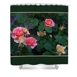 Shower Curtain featuring the photograph Bettys Beautys by Bobbee Rickard