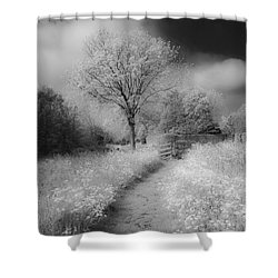 Between Black And White-23 Shower Curtain