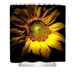 Between Here And There Shower Curtain by Bob Orsillo
