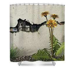 Between The Cracks Shower Curtain by Cynthia Decker