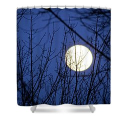Beware The Ides Of March Shower Curtain